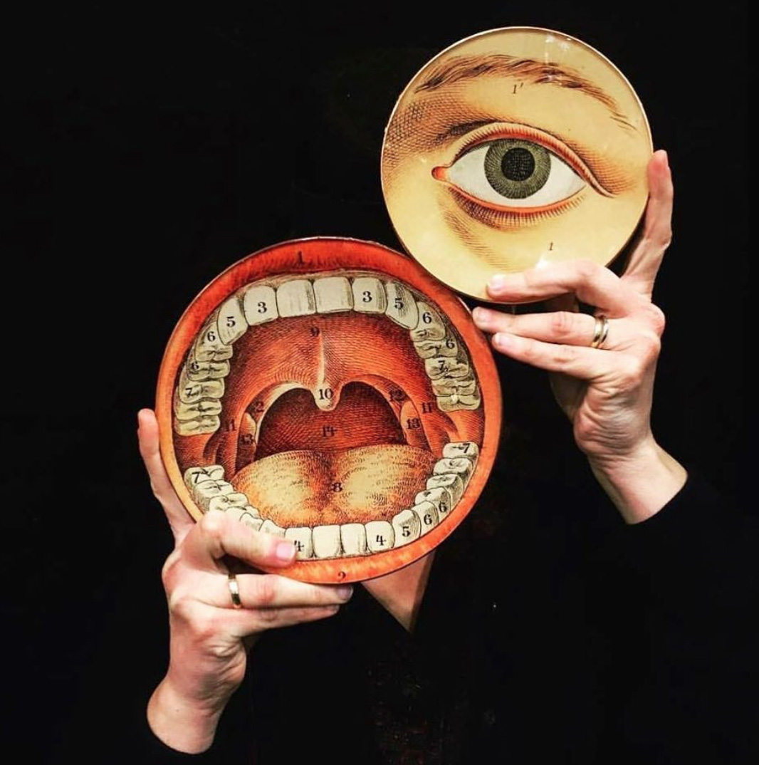 alt mean sold - plates anatomical collection