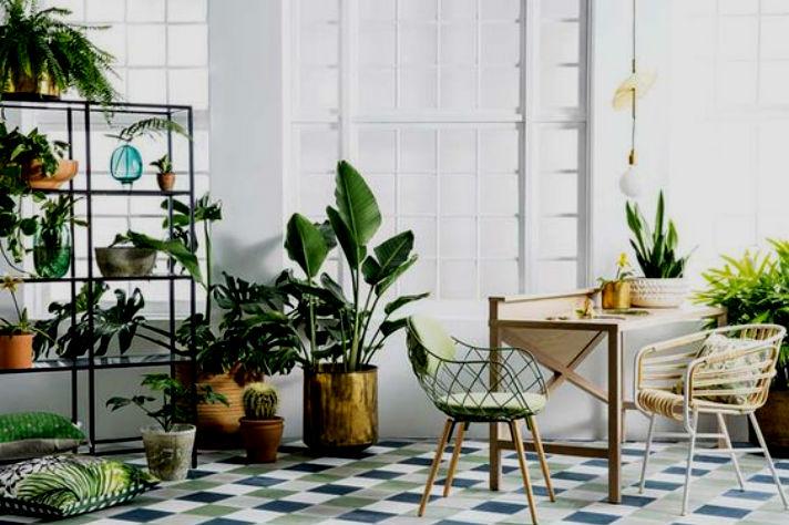 cover angolo green piante in casa